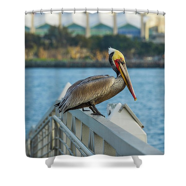 Peli-can Or Can't? Shower Curtain