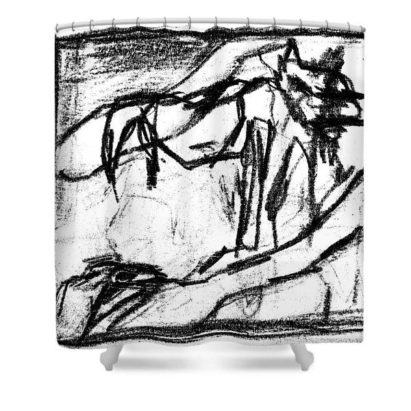Pencil Squares Black Canine B Shower Curtain