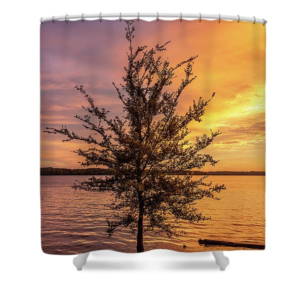 Percy Priest Lake Sunset Young Tree Shower Curtain