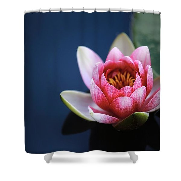 Perfect Lotus Shower Curtain