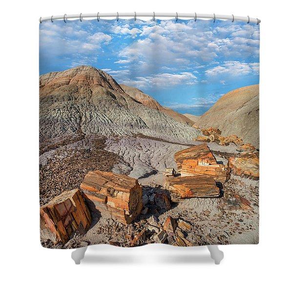 Petrified Logs, Blue Mesa, Petrified Shower Curtain