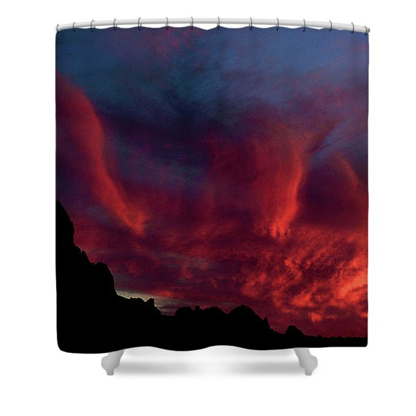 Phoenix Risen2 Shower Curtain