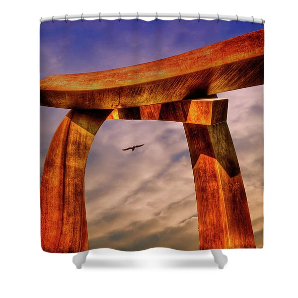Pi In The Sky Shower Curtain
