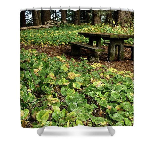Picnic  Table In The Forest  Shower Curtain