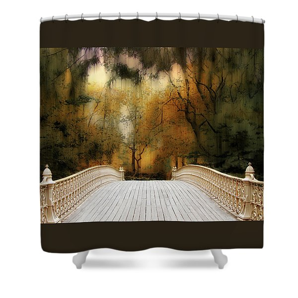 Pine Bank Arch In Autumn Shower Curtain