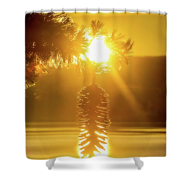 Pine Cone Fire Shower Curtain