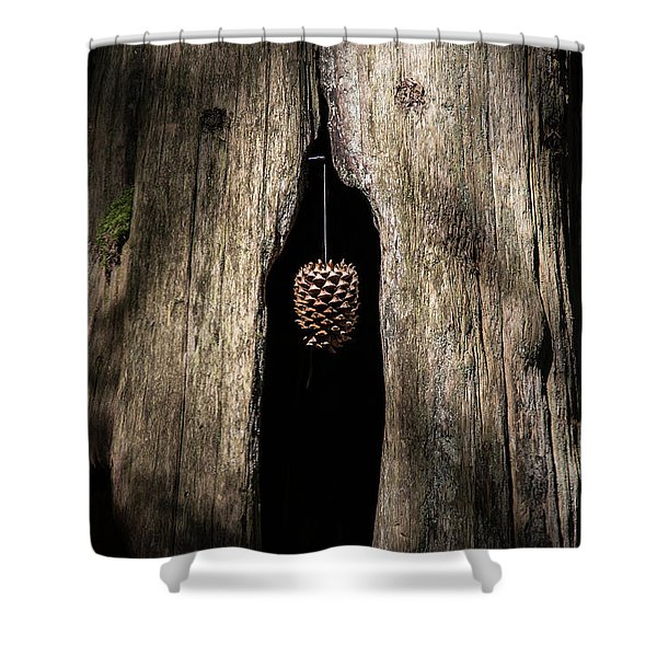 Pinecone  Shower Curtain