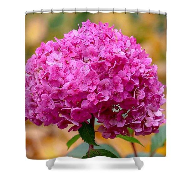 Pink Bouquet  Shower Curtain