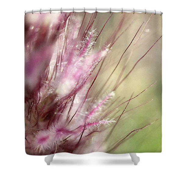 Pink Cotton Candy Shower Curtain