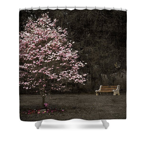 Pink Dogwood Tree And A Bench Shower Curtain