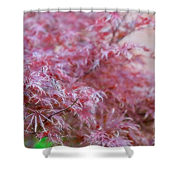 Pink Fairy Tale Shower Curtain