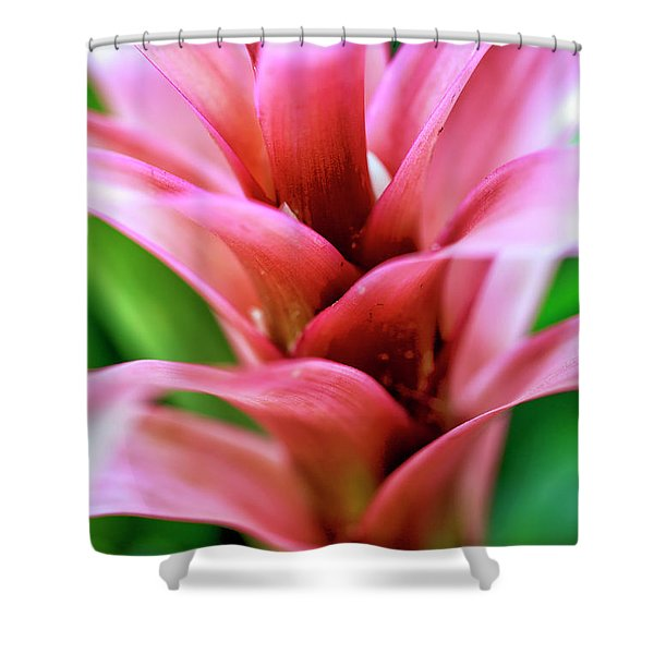 Pink Flower Layers At The Desert Botanical Garden Shower Curtain