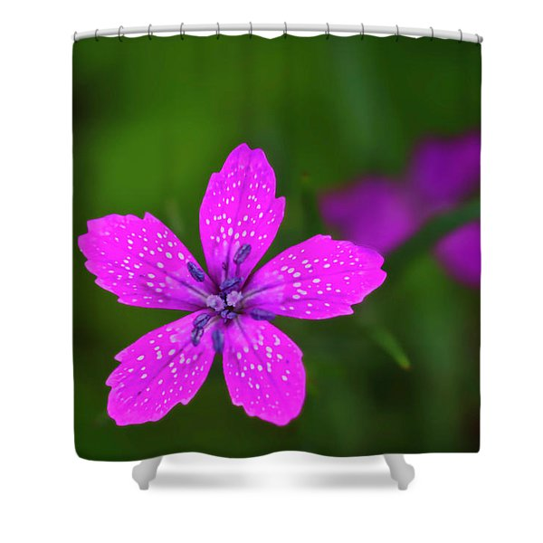 Shower Curtain featuring the photograph Pink Flower by Meta Gatschenberger