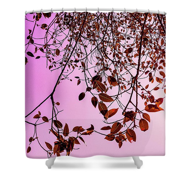 Pink Glow Shower Curtain