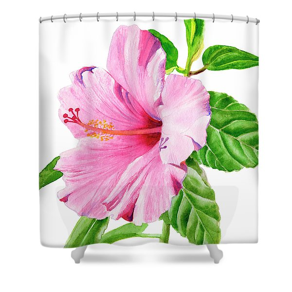 Pink Hibiscus With White Background Shower Curtain