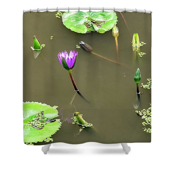 Pink Lily Vietnam Style Shower Curtain