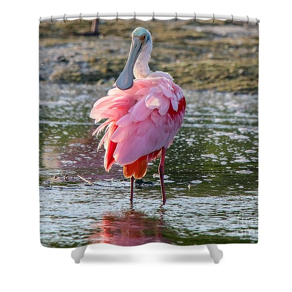 Pink Tutu Shower Curtain