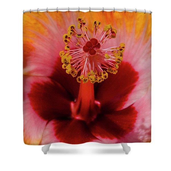 Pistol Packin' Flower Shower Curtain