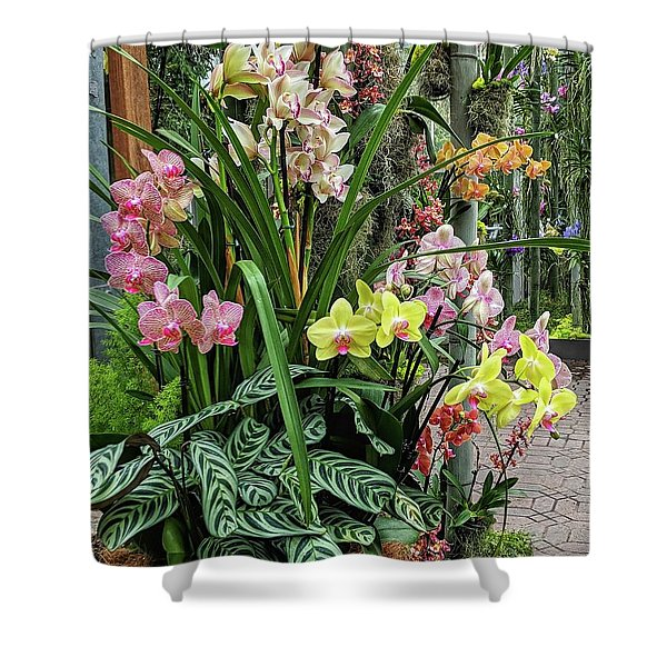 Plentiful Orchids Shower Curtain