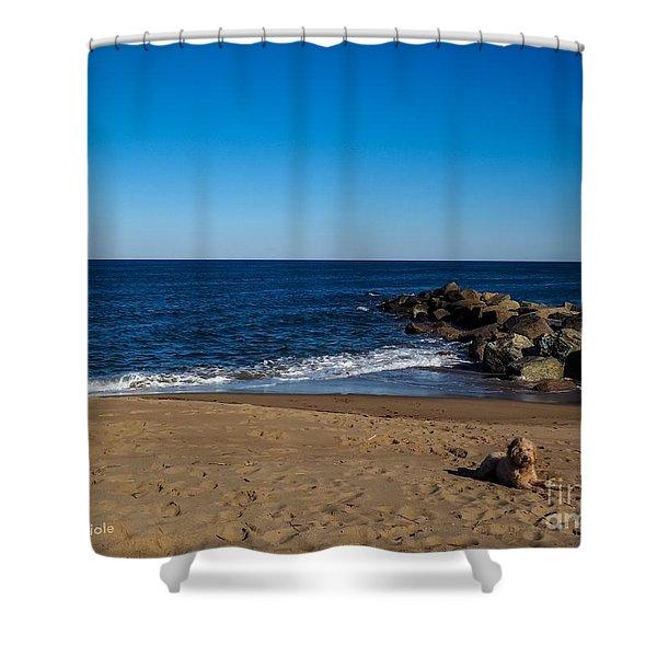 Plum Island Scene Shower Curtain