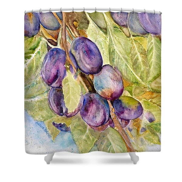 Plums On The Vine Shower Curtain
