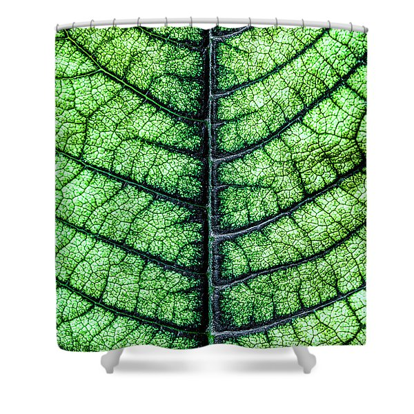 Poinsetta Leaf In Abstract Macro Shower Curtain