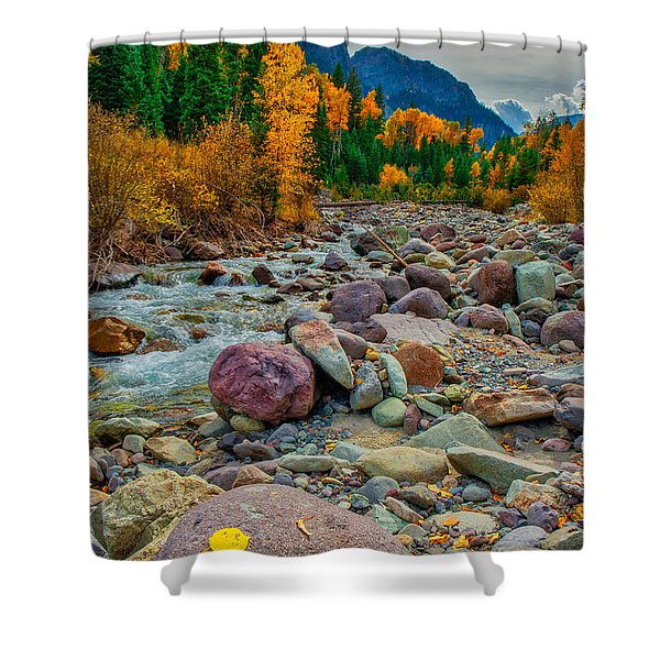 Point Of Color Shower Curtain