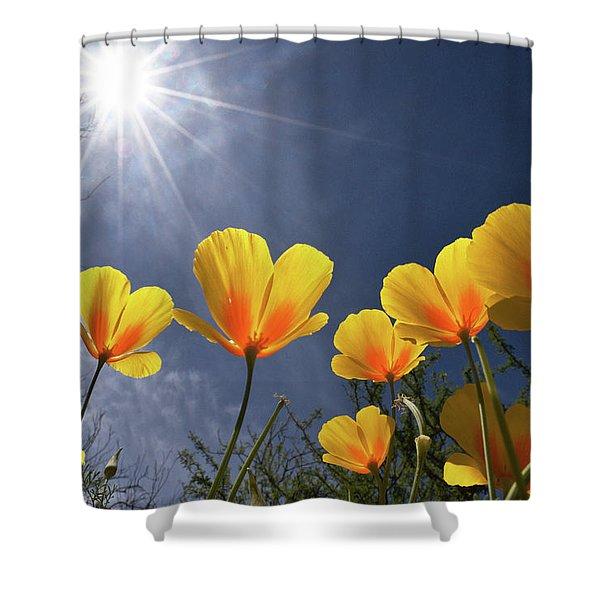 Poppies Enjoy The Sun Shower Curtain