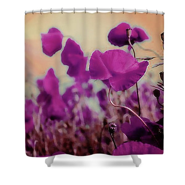 Poppies In Sunlight Shower Curtain