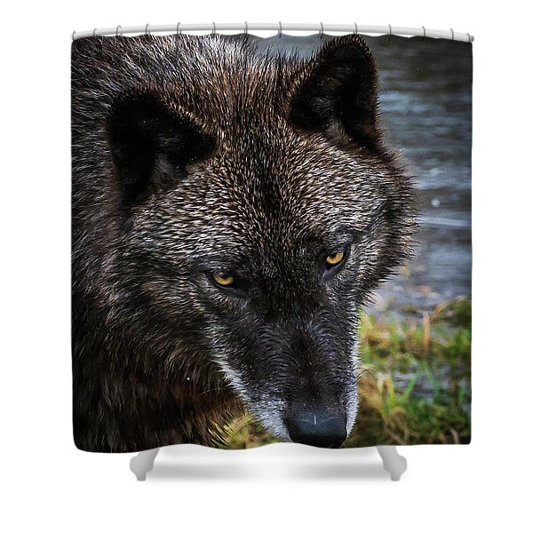 Portrait Niko Shower Curtain