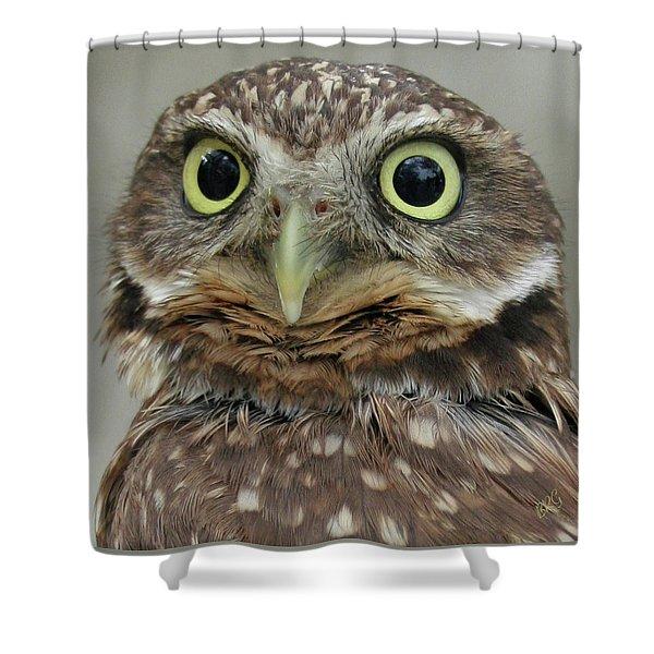 Portrait Of Burrowing Owl Shower Curtain