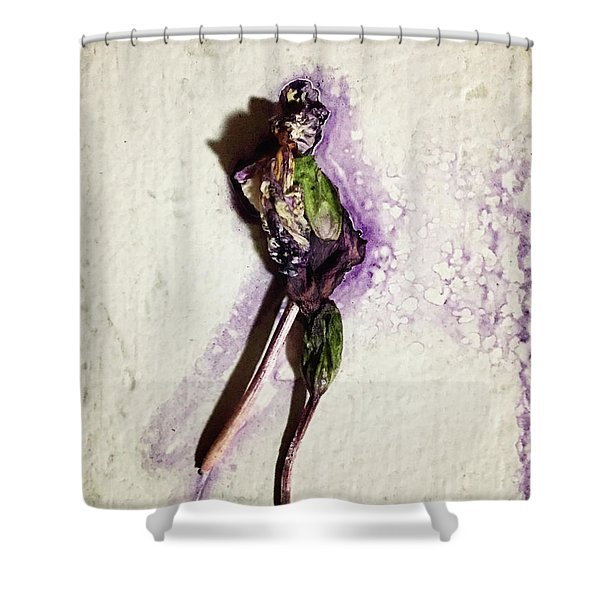 Portrait Of Stan Shower Curtain