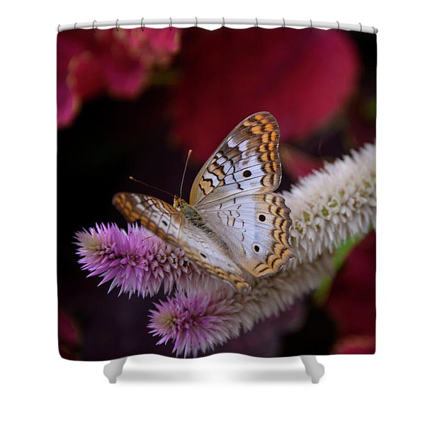 Shower Curtain featuring the photograph Posed Perfect by Michelle Wermuth