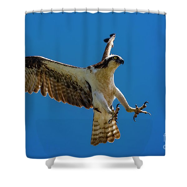 Powerful Landing Shower Curtain