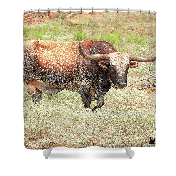 Prairie Longhorn Shower Curtain