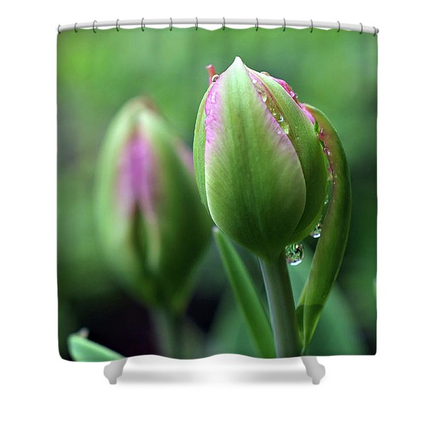 Shower Curtain featuring the photograph Pray For Rain by Michelle Wermuth