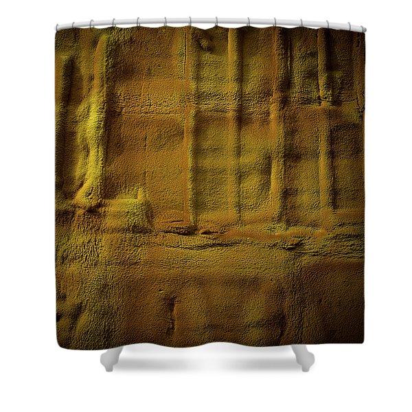 Prehistoric Scene Shower Curtain