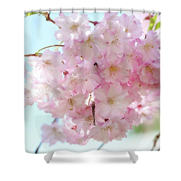 Pretty Pink Blossoms Shower Curtain