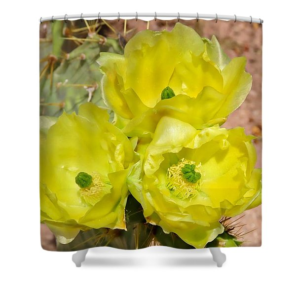 Prickly Pear Cactus Trio Bloom Shower Curtain