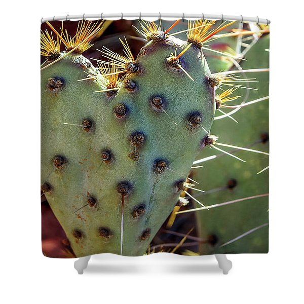 Shower Curtain featuring the photograph Prickly Pear Heart 1 by Dawn Richards
