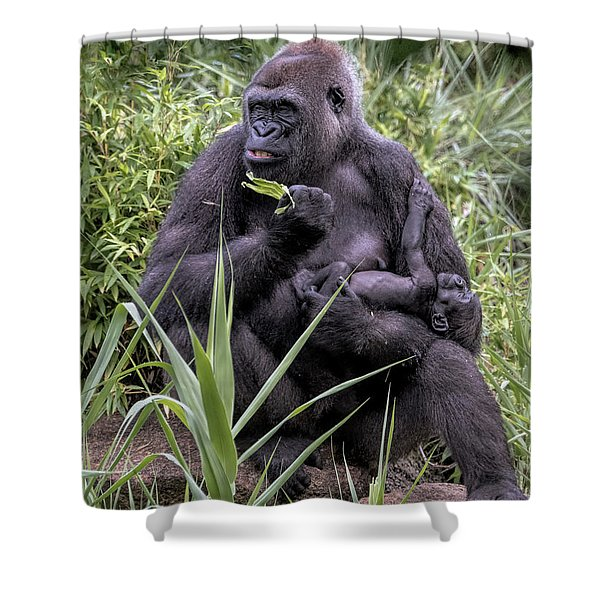 Proud Mama Silverback 6243 Shower Curtain