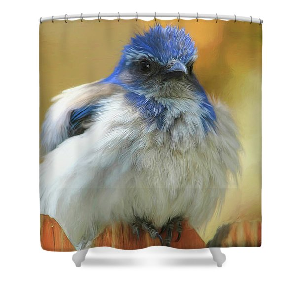 Puffed Shower Curtain