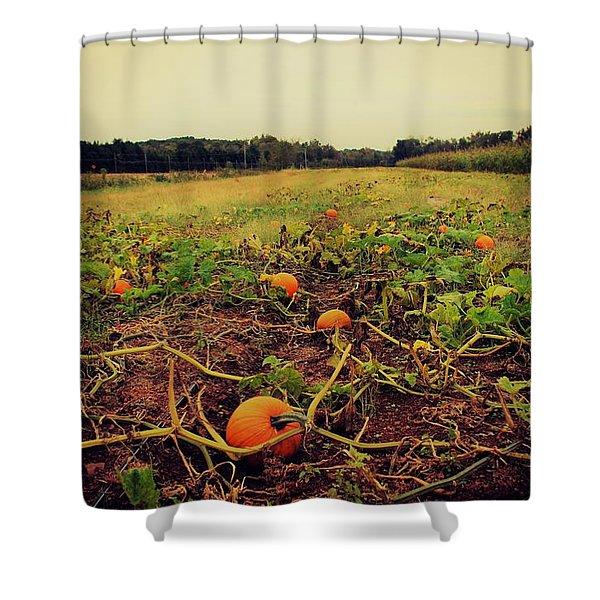 Pumpkin Picking Shower Curtain