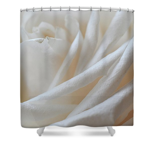 Shower Curtain featuring the photograph Purity by Michelle Wermuth
