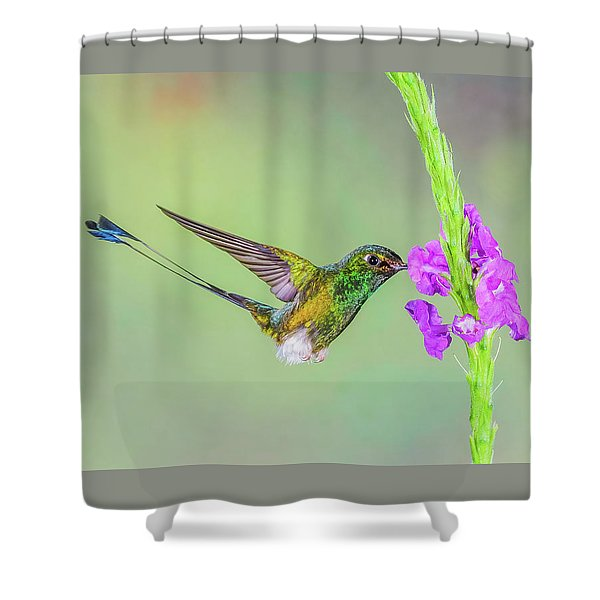 Purple Attraction Shower Curtain