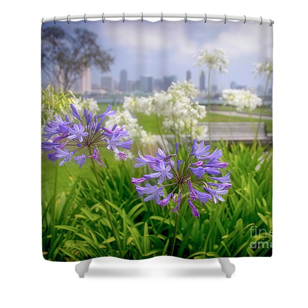 Purple Flowers In San Diego Shower Curtain