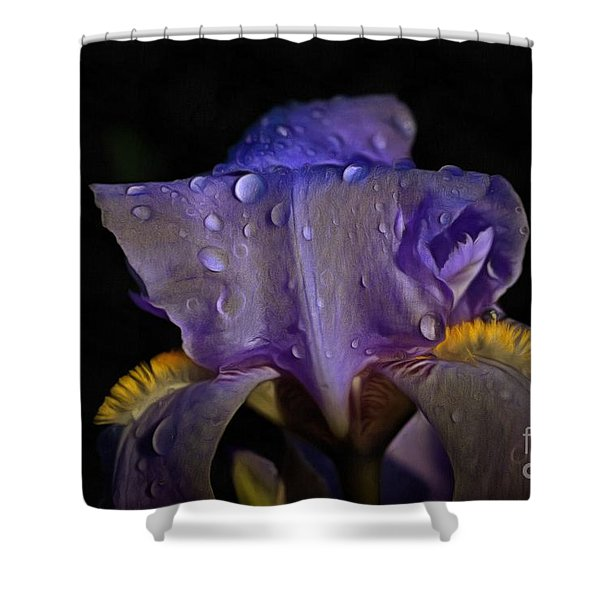 Purple Iris And Dewdrops Shower Curtain