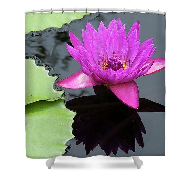 Purple Majesty Shower Curtain