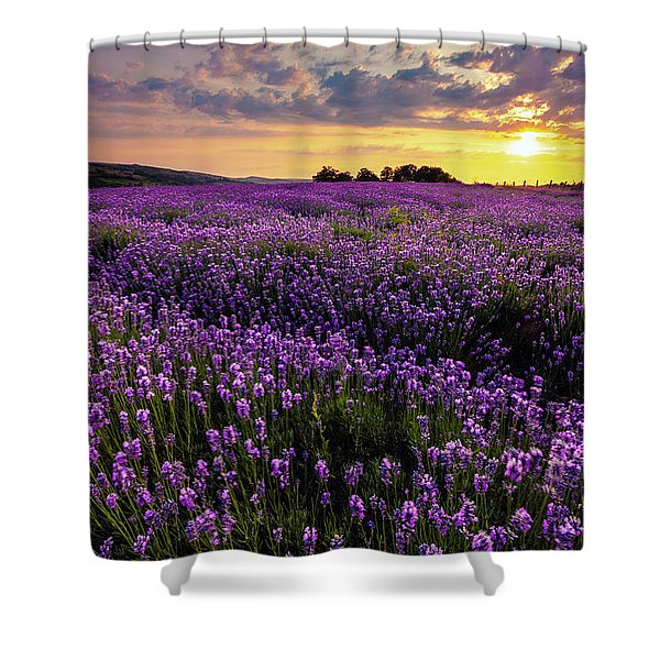 Purple Sea Shower Curtain