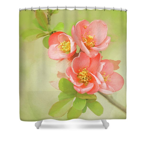 Shower Curtain featuring the photograph Quatro Quince by Emily Johnson